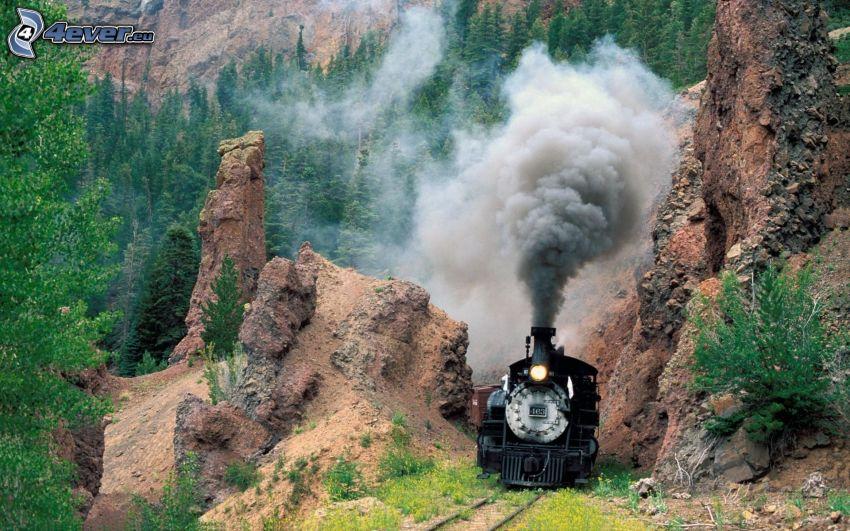 steam train, rocks, forest