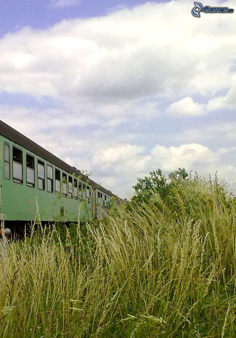 train, grass, clouds