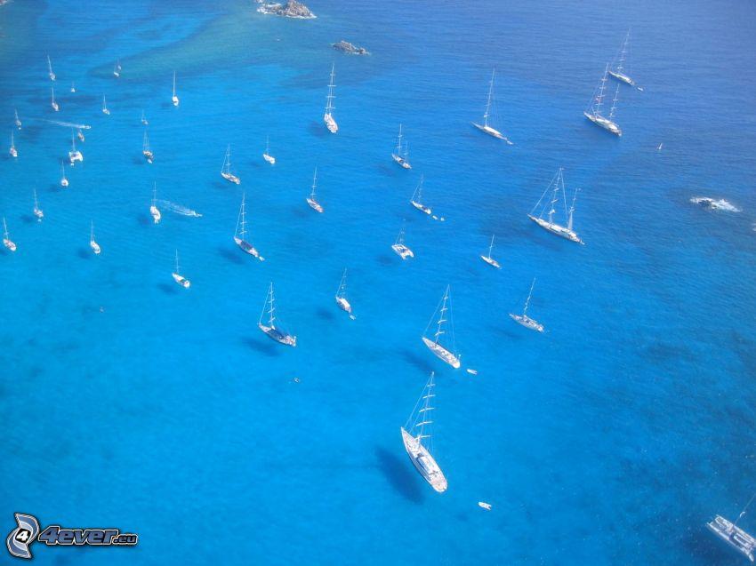 yachts, sea