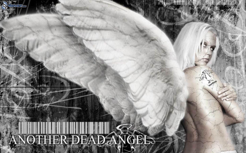 Angels at sexy Naughty Angels