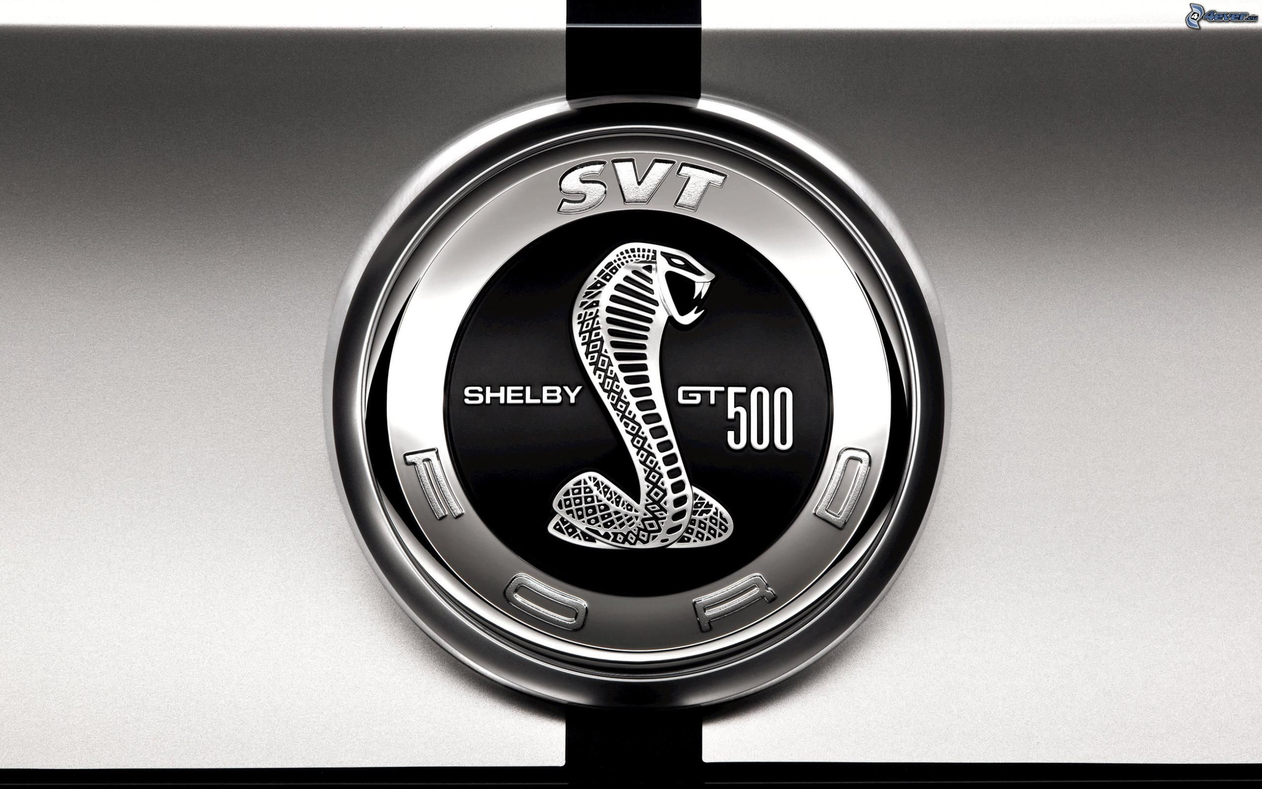 ford shelby cobra gt500 pictures and wallpapers